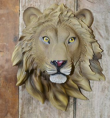 Small  Lion Head Mount Taxidermy Like