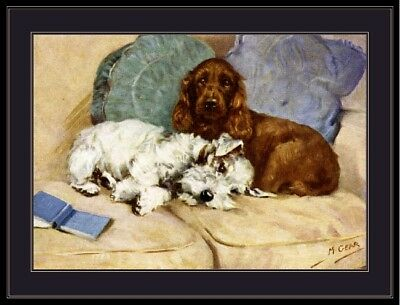 Print Cocker Spaniel Sealyham Terrier Dog Dogs Puppy Puppies Art Poster Picture