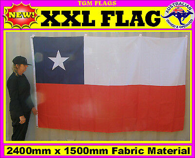 Chile flag Chilean flag for house wall pole sports event man woman cave