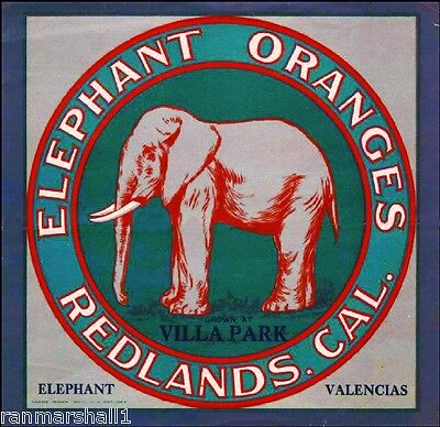 Villa Park & Redlands Elephant Orange Citrus Fruit Crate Label Vintage Art Print