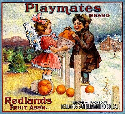 Redlands California Playmates Orange Citrus Fruit Crate Label Vintage Art Print