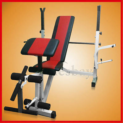 Multi Station Home Gym Weight Bench Press Incline Fitness Ab Set Fitness Curls