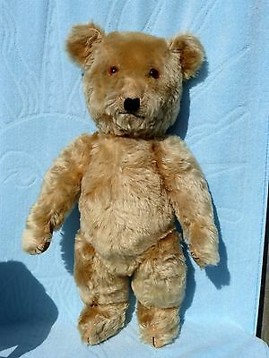 """ANTIQUE TEDDY BEAR CHILTERN LARGE GORGEOUS MOHAIR GLASS EYES OLD TOY VINTAGE 22"""""""
