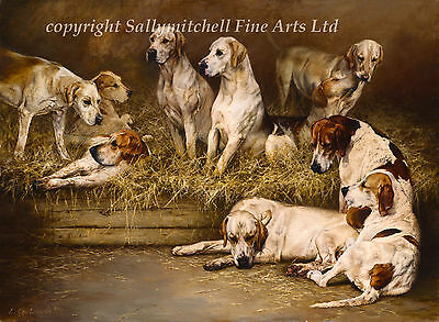 Fox Hound, hunting dog fine art print by Emily Charlesworth. On the Benches