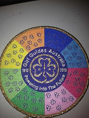 Girl Guides / Scouts Powering into the future Gold