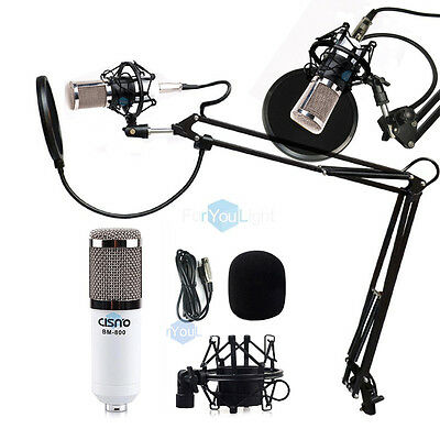 Professional Studio Sound Recording Condenser Microphone w/ Arm Stand Pop Filter