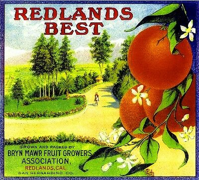 Redlands Best Orange Citrus Fruit Crate Label Art Print