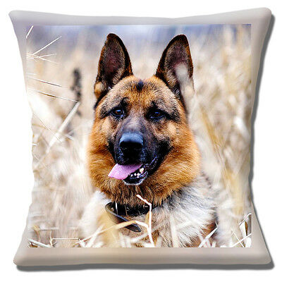"NEW GERMAN SHEPHERD DOG ADULT PHOTO PRINT IN FIELD 16"" Pillow Cushion Cover"