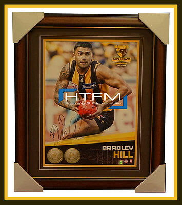 Brad Hill Signed 2014 Premiers AFL OFFICIAL Hawthorn Photo Framed - IN STOCK NOW