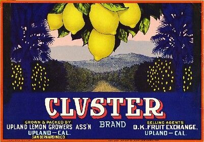 Upland San Bernardino County Cluster Lemon Citrus Fruit Crate Label Art Print