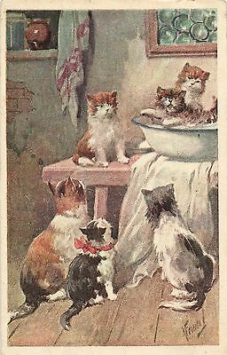 Feiertag cats and kittens having fun artist signed postcard