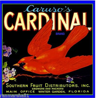 Winter Garden Florida Caruso's Cardinal Orange Citrus Fruit Crate Label Print