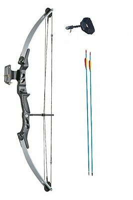 Adult Archery Compound Bow 55lbs Silver & Black W/Release Aid, Arrows & Sight