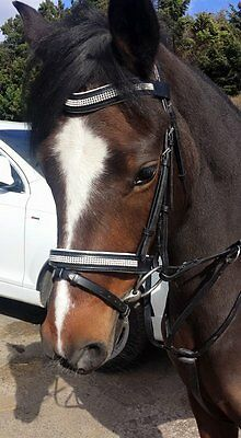 New Padded Bling Diamante Leather Bridles with Rubber Grip Reins 7 Colours