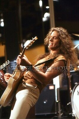 Ted Nugent Photo 8x10 Live 80's Concert Pro Fuji Print from 35 mm Negative 81