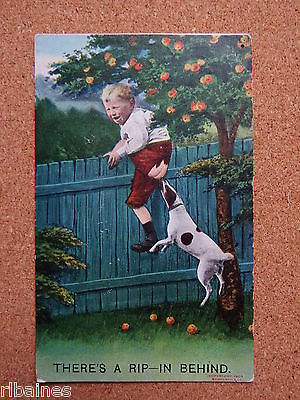 R&L Postcard: Comic Jack Russell Biting Boys Behind, Scromping Child Apple Tree