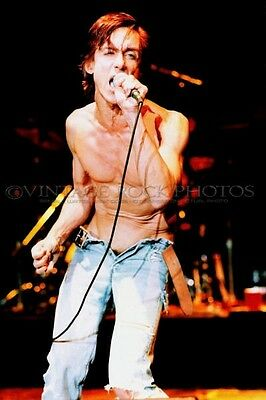 Iggy Pop Photo 8x12 or 8x10 inch Live Vintage '80s Concert Pro Studio Print 2