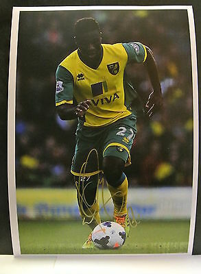 A 12 x 8 inch photo personally signed by Alexander Tettey of  Norwich City