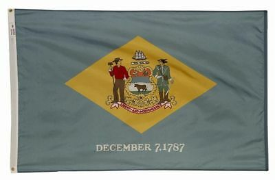 DELAWARE The First State OFFICIAL STATE FLAG 4X6 FT OUTDOOR NYLON MADE IN USA