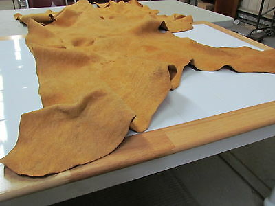"""58""""x 28"""" Native American Traditionally Tanned Hide"""