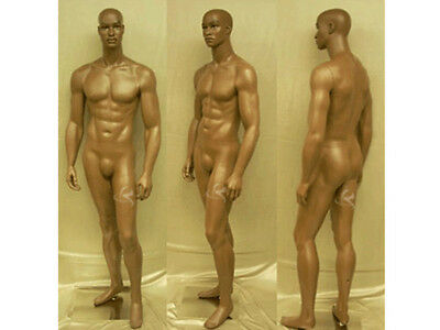Male Fiberglass Chocolate Muscular Mannequin Dress From Display #MD-CCF2