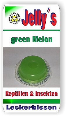 Jelly Food Dragon 8x16gr Fruchtgelee  Green Melone für Reptilien Käfer Insekten