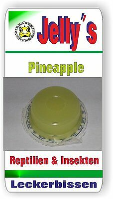 Jelly Food Dragon 1x16gr Fruchtgelee Pineapple für Reptilien Käfer Insekten