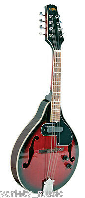 Bryden Electric/acoustic arch top mandolin. Teardrop 'A' style with single coil