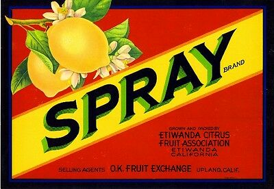 Etiwanda Upland San Bernardino Spray Lemon Citrus Fruit Crate Label Art Print
