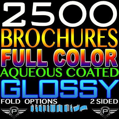 """2500 BROCHURE 6"""" X 9"""" FULL COLOR 2 SIDED 6x9 100LB GLOSSY CUSTOMIZED FOLDED"""