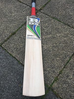 Grade 1 English Willow Cricket Bat Rdx Extreme Ready To Go Introduction Price