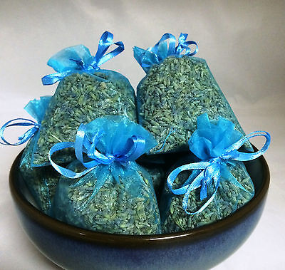 Set of 10 Lavender Sachets made with Turquoise Organza Bags