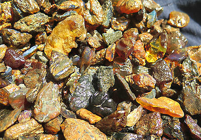 Wholesale Lot 470 grams Dominican Clear Blue Red Green Amber Rough Specimen 1 LB