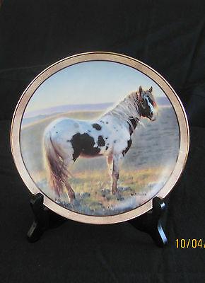 """""""First Light"""" limited edition horse collector's plate by Nancy Glazier, with COA"""