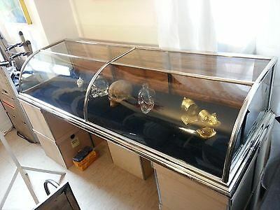 Large Victorian Curved Glass Countertop 1800's  Display Case ,showcase