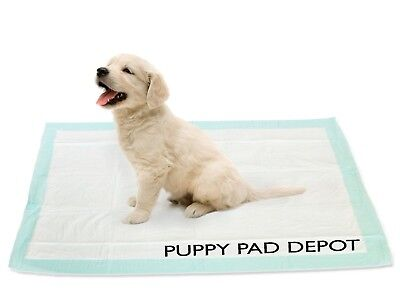 "McKesson Moderate 100 30""x36"" Underpads Puppy Dog Pads Wee Wee Pee Piddle"