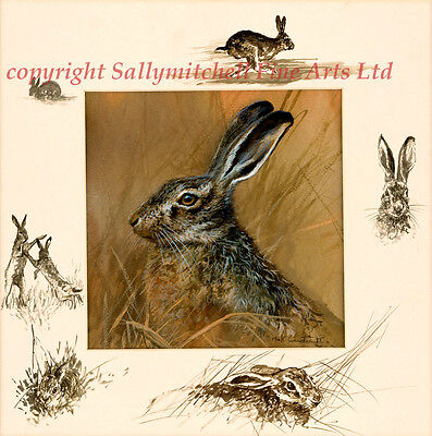The Hare lovely wildlife fine art print by Mick Cawston