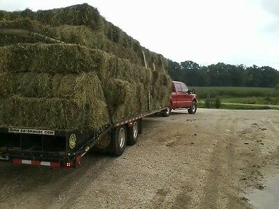 Clover/Grass mix hay