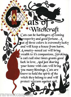 Magickal Witch'sCats  Real Wicca Book of Shadows Pages Pagan Witchcraft Spell