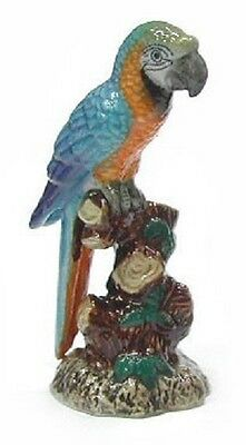 Northern Rose R282C -  Blue & Gold Macaw