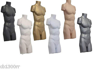 1Qty Male Coloured Hanging Body Form Mannequin Bust Dummy New