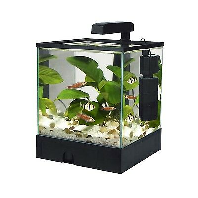 Fish 'R' Fun Aquarium Fish Tank Aqua Box Black 5.5L