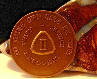 Alcoholics Anonymous AA 2 year Month Bronze Medallion Token chip Coin Sobriety