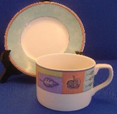 Royal Doulton Trailfinder Cup and Saucer Set