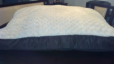 Large dog beds. Brown trim soft tan cover.