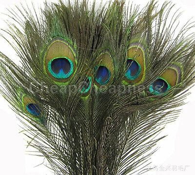 50 Pcs Reliable Good Natural Real Peacock Tail Eye Feathers Home Decor SPCA