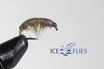 ICE FLIES Nymph. Marflo Olive . (4-pack). Available in size 8 - 14