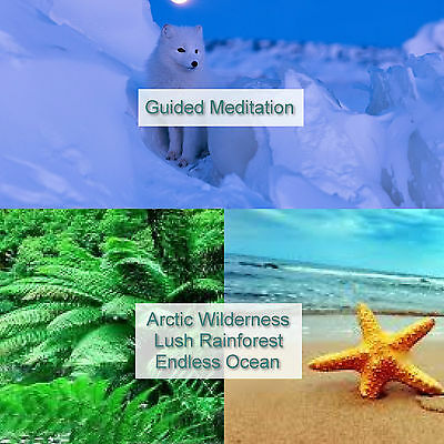 3 Guided Meditation Relaxation Sessions CD Stress Relief Sleep Aid Calming Heal