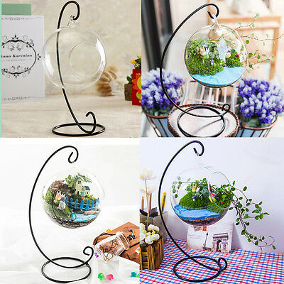 Hanging Glass Ball Vase Flower Plant Pot Stand Terrarium Container Home Garden