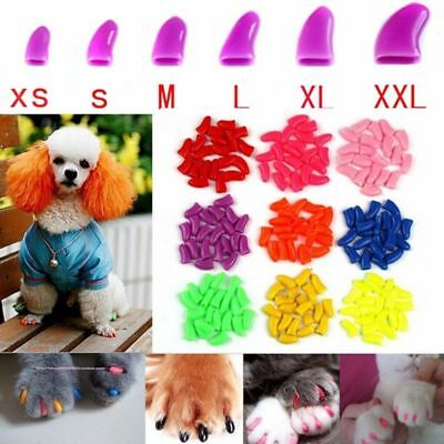 20pcs/Set Pet Dog Puppy Paw Cover Claw Soft Grooming Nail Caps With 1 Glue New